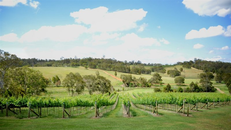 South-Bernett-Wine-Tours