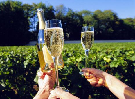 South-Bernett-Wine-Tours1