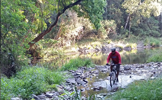 IMG_Biking_323x2001